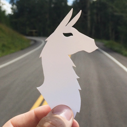 Receive a free llama sticker provided by Cotopaxi