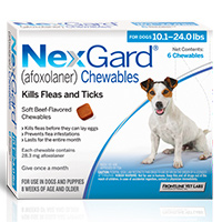 Get A Free Nexgard Sample For Your Dog