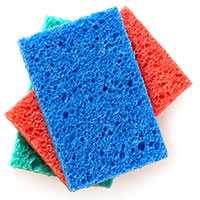 Receive A Sponge Kit by Joining the Movement