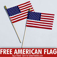 Request Your FREE American Flag From ACE Hardware