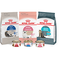 Win A Six-Month Supply Of Royal Canin Premium Cat Nutrition